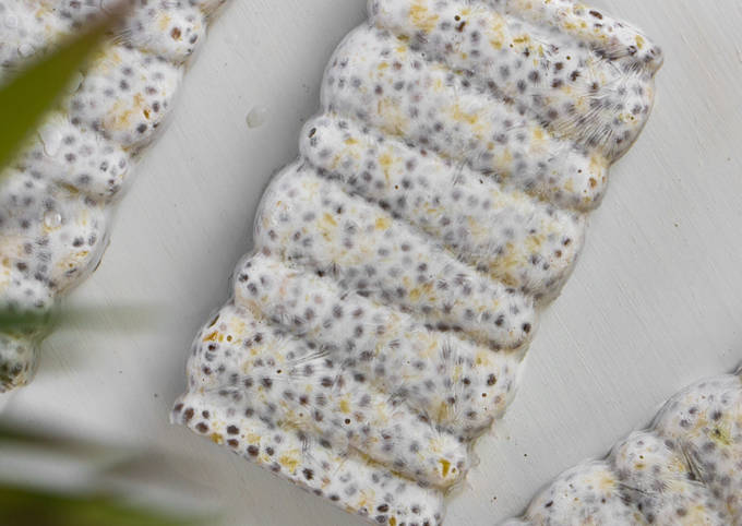 Chia Pineapple Coconut Pudding Popsicle