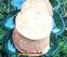 Hình ảnh Pancake Cam Chuối