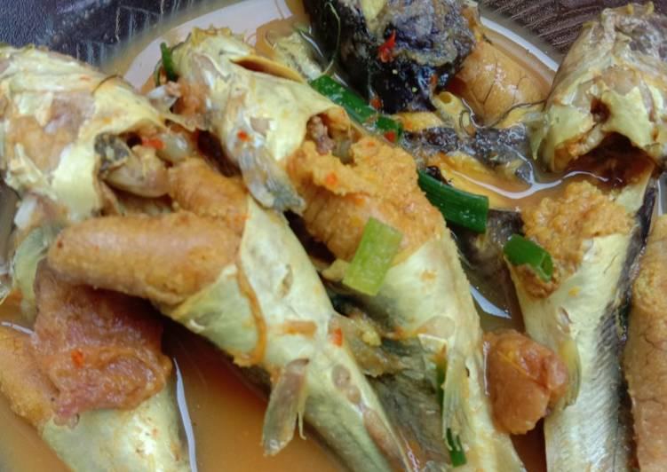 Asem asem ikan lundu (kelo kuning khas lamongan)