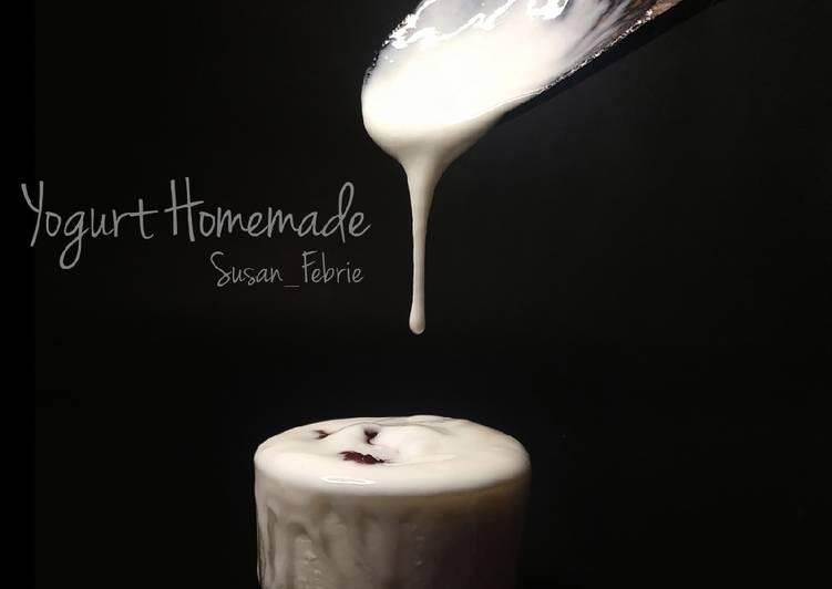 Yogurt Homemade