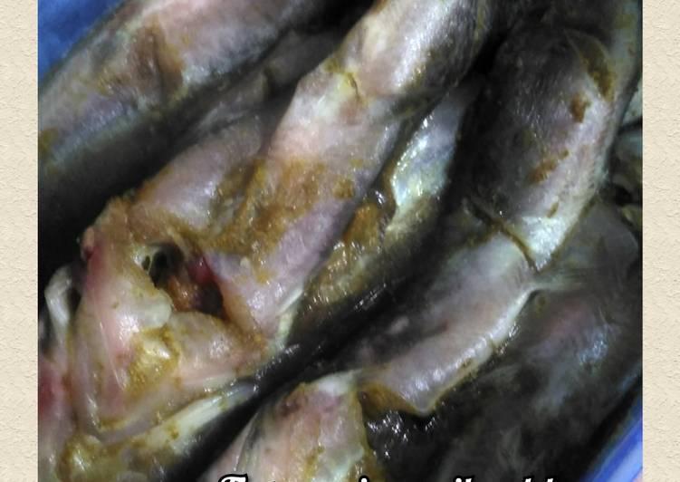 Tips menyimpan ikan lele ala saya