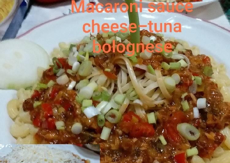 Fettuccine/Macaroni Sauce Cheese-Tuna Bolognese