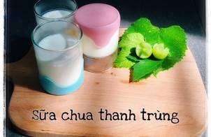 Sữa chua từ sữa tươi thanh trùng