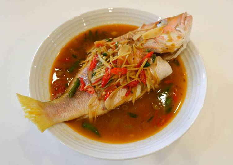 Resep Steam Ikan Kakap Jahe Oleh Novishu Cookpad