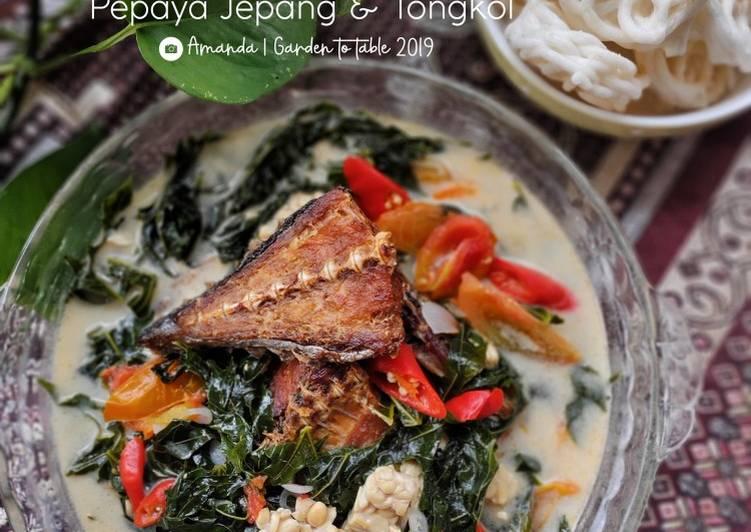 Sayur Santan Pepaya Jepang dan Tongkol