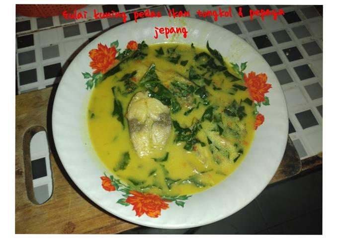🥗Gulai kuning Pedes ikan tongkol & pepaya jepang🥗