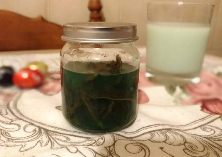 Sirup Mint Homemade