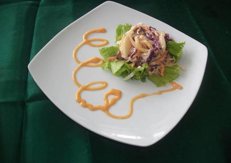 Resep Coleslaw Salad Oleh Eka Dita Agustin Cookpad