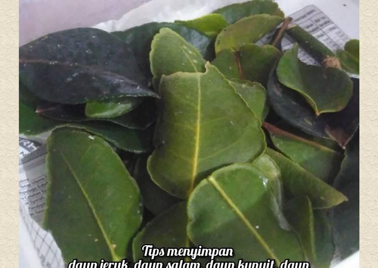Tips menyimpan daun jeruk, daun salam, daun kari, dan daun kunyit