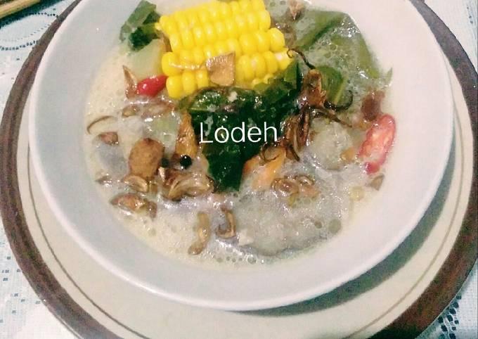 lodeh (bumbu iris) - resepenakbgt.com