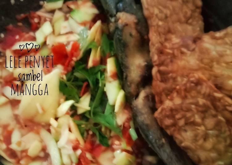 lele-penyet-sambal-mangga