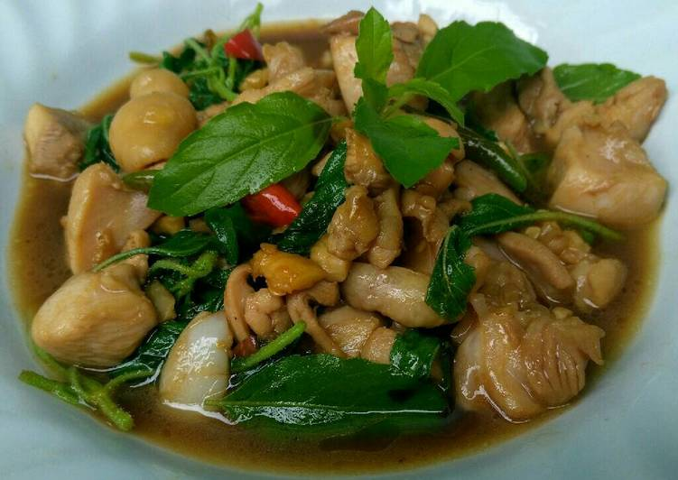 Recipe: Perfect Stir Fried Chicken with Hot Basil and Chili (Phad Kaphrao Gai)