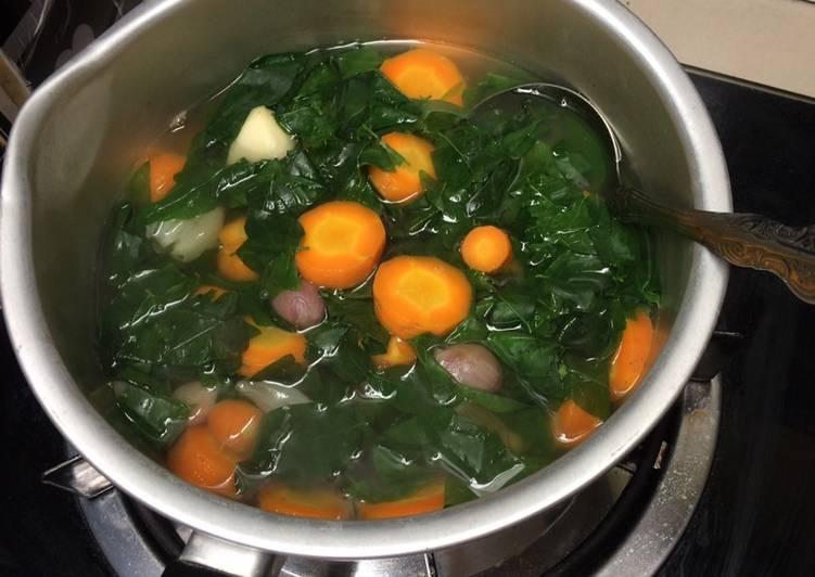 Sayur katuk wortel busui sehat