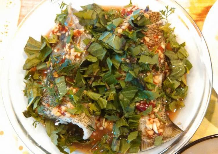 Thai style steamed bass 泰式酸辣鱼🐟