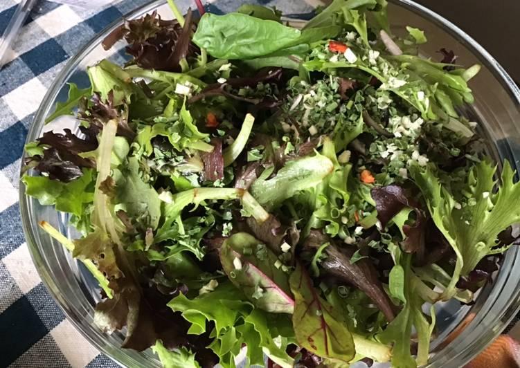 Salade de jeunes pousses aux fines herbes