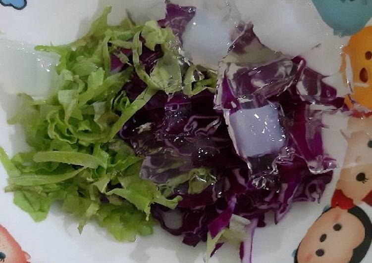 Salad Sayur Selada vs Kol Merah