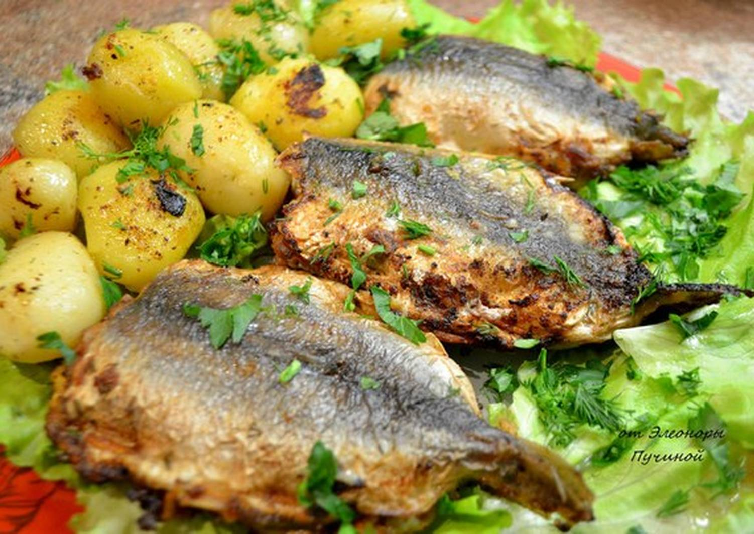 Рецепты из салаки с фото