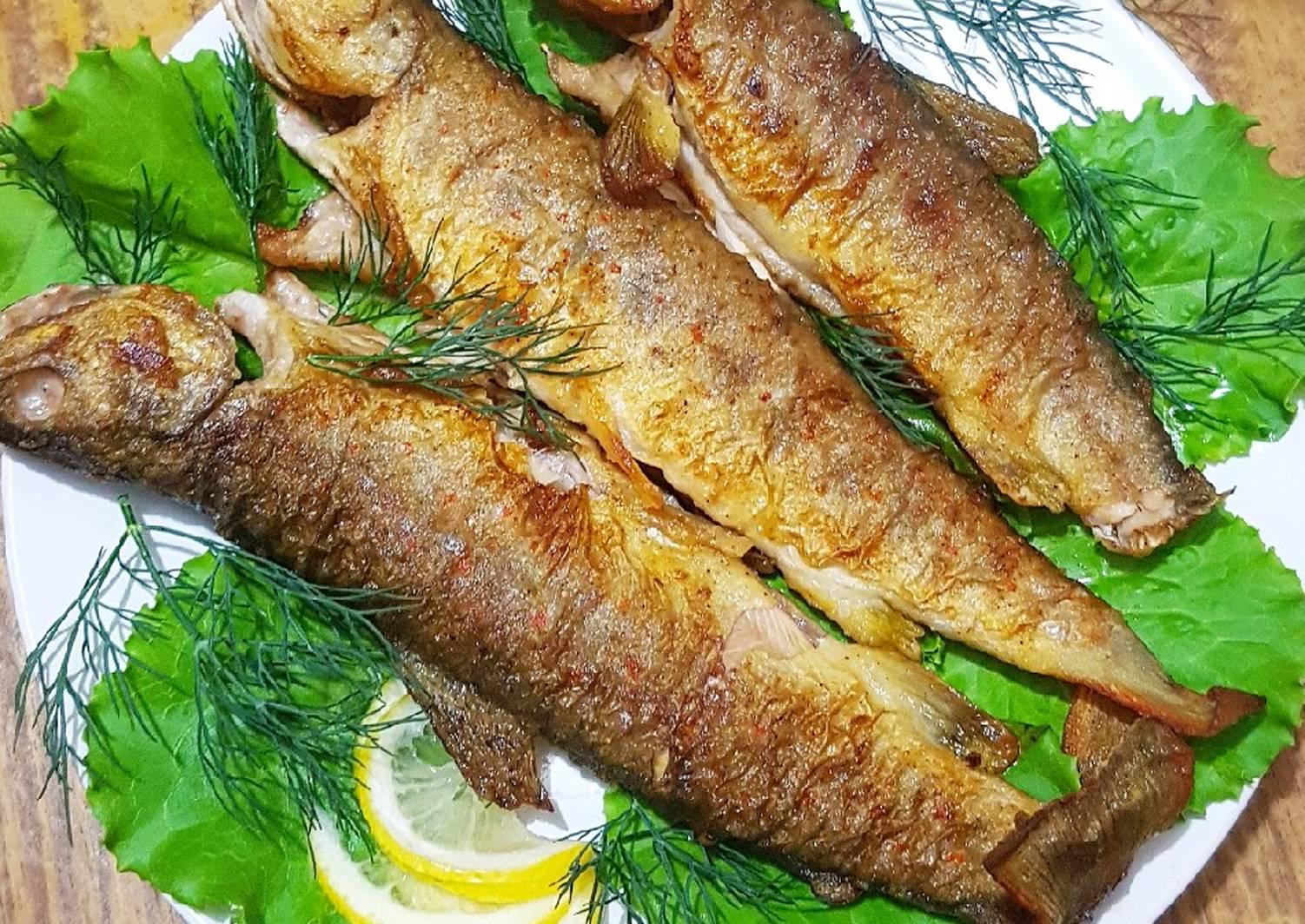 блюда из речной рыбы рецепты с фото классической