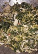 Resep Dan Cara Memasak Tumis daun, bunga pepaya, ikan teri Mudah dan cepat
