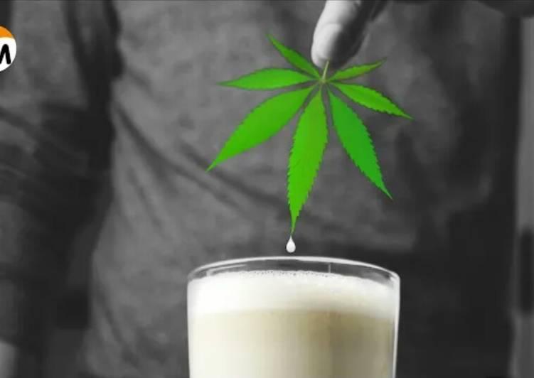 Как готовить молоко с коноплей фильм про торговлю марихуаной