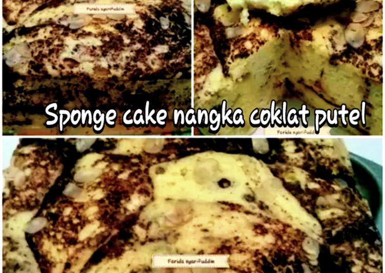 Langkah Mudah untuk Menyiapkan Sponge cake nangka coklat putih telur yang Enak Banget