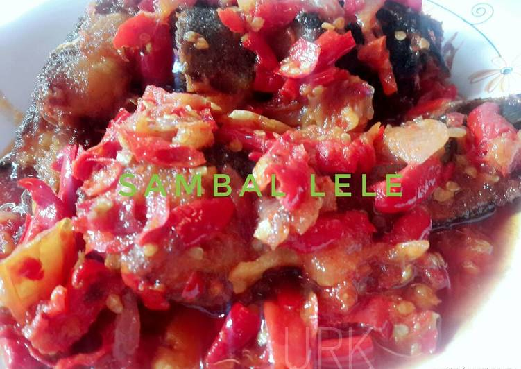 SAMBAL LELE (khas minang)