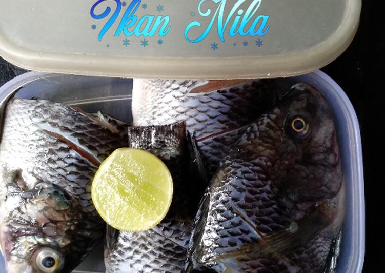 Tips menyimpan ikan