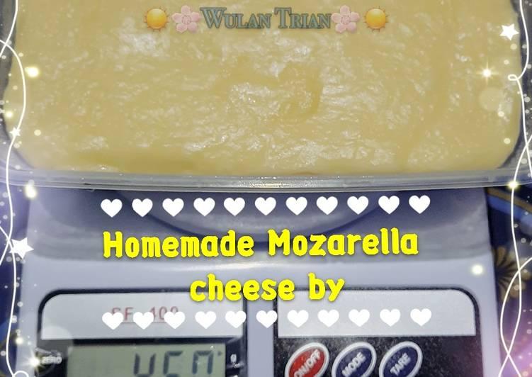 Mozarella Cheese KW