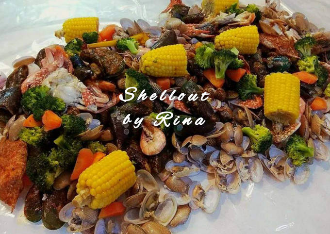 Shellout by Rina