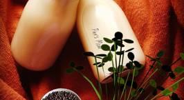 Hình ảnh món Sữa hạt kê- đậu xanh- hạt sen