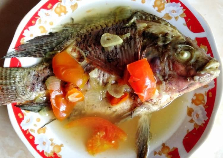 24. Tim Ikan Mujaer Nila