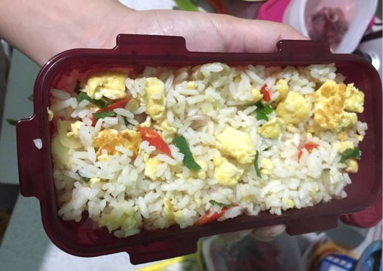 Resep Bekal suami simple Nasi goreng putih Paling Mudah