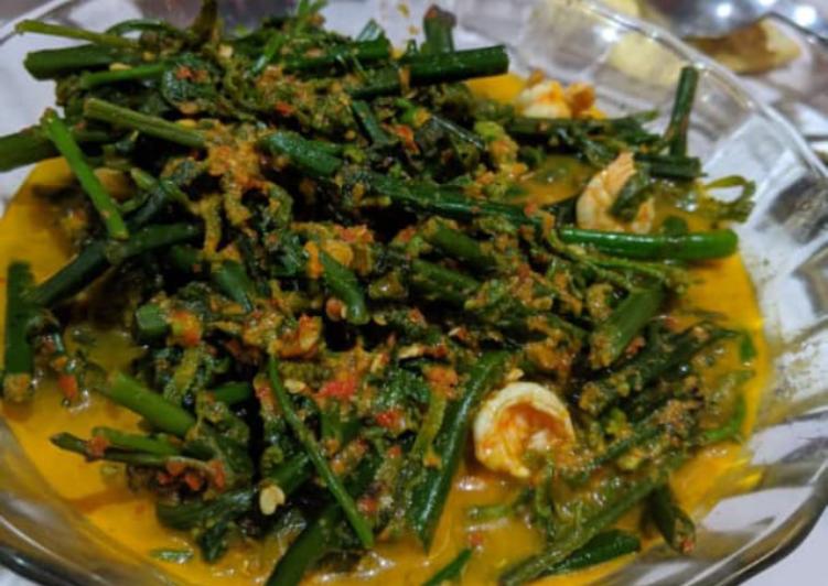 Resep Gulai sayur pakis Yang Simple Pasti Enak