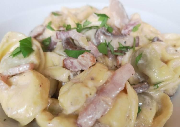 Tortellini in einer Pecorino Pilz Weißwein Sahnesoße und Speck