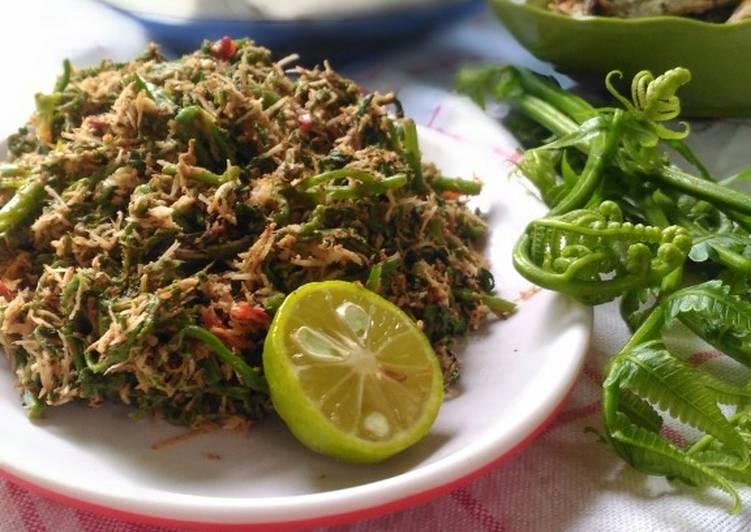 Resep Lawa Pakis Sayur Paku Pedas Oleh Vania Kitchen Cookpad