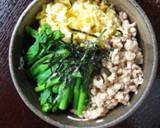 Three Color Rice Bowl recipe step 6 photo