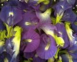 Creamy Blue Silky Puding (Bunga Telang) langkah memasak 1 foto