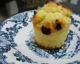 Cranberries Lemon Wilton Muffins recipe step 13 photo