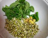 Sprouts mint dokla recipe step 1 photo