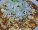 My Mapo Tofu recipe step 9 photo