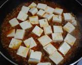 My Mapo Tofu recipe step 4 photo