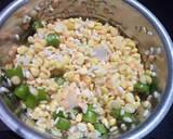 Appe mix dal dahibade recipe step 1 photo